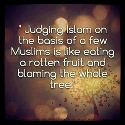 judging islam on the basis of a few muslims